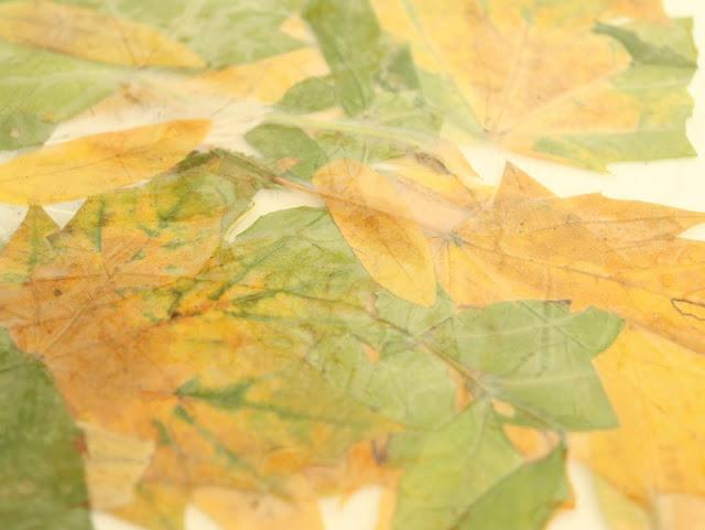 activite-avec-des-feuilles-mortes
