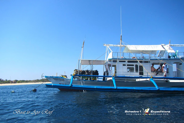 Boat to Apo Reef - Schadow1 Expeditions