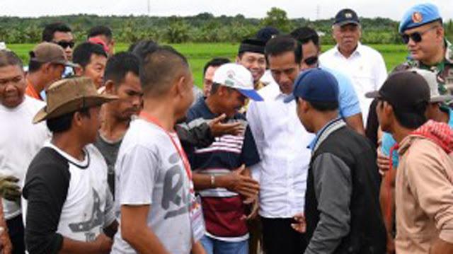 Presiden Jokowi: Tahun Depan Dibangun Tanggul Danau Tempe