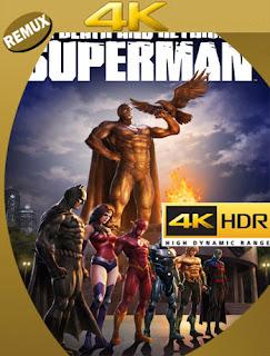 The Death and Return of Superman (2019) BDREMUX [UHD 4K] Latino [Google Drive] Panchirulo