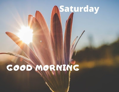 good morning Saturday images telugu
