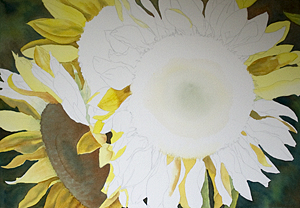 Sunflowers full Sheet Watercolor Painting Update 3