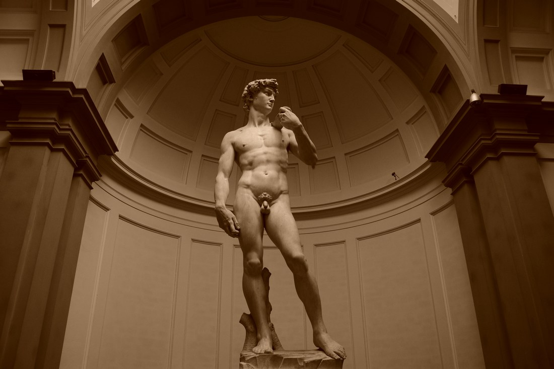 David - Michel-Ange - 1501