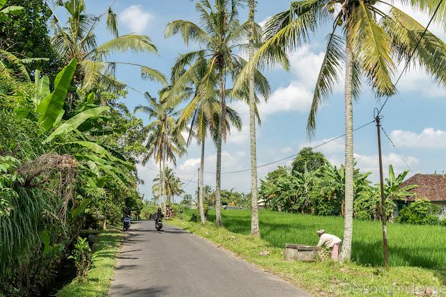 Route vers Jatiluwih - Bali