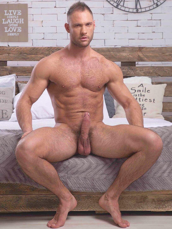Naked Male Pornstars