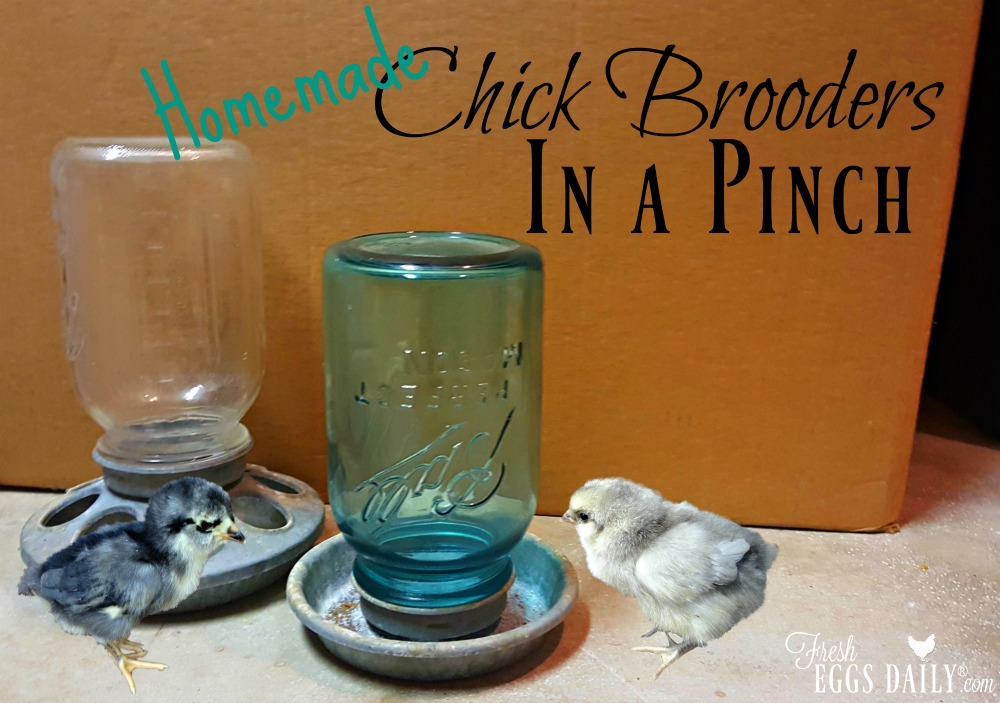 Seven Homemade Chick Brooders