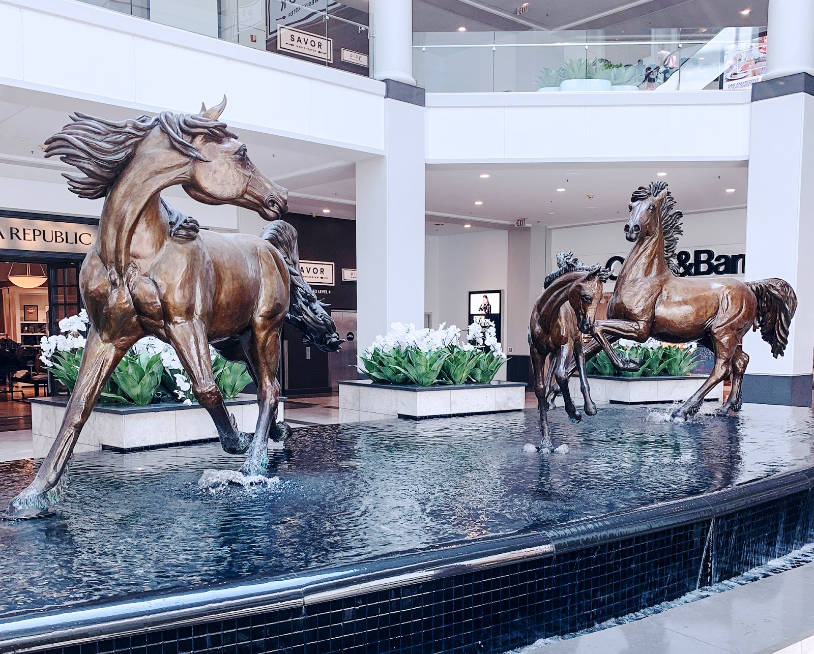 Travel,The Westchester __ shopping mall in downtown White Plains, New York