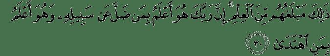 Surat An-Najm Ayat 30