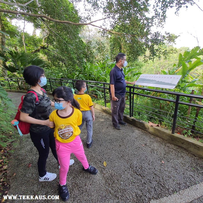 The Habitat Penang Hill Kancil Walk Guided Tour