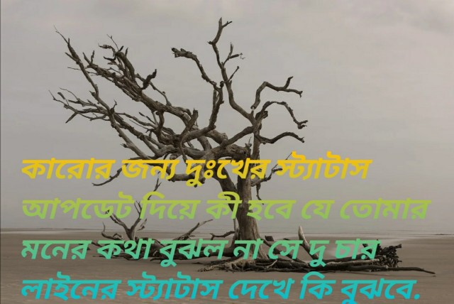 bangla shayeri photo