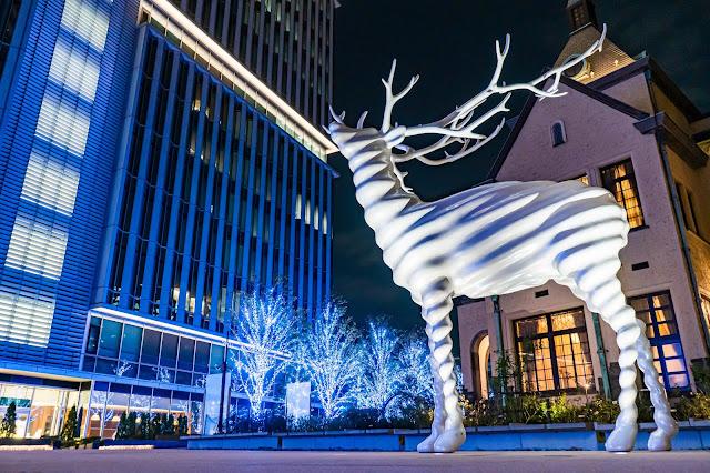 鹿,イルミネーション,クリスマス