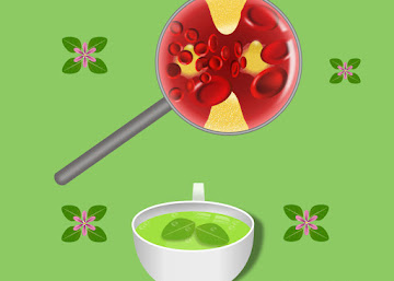 Receita Contra Arteriosclerose: Chá de Sete Sangrias