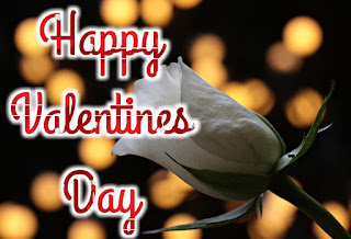 Happy Valentines Day Images, Pics, Photos & Wallpapers 2020 HD