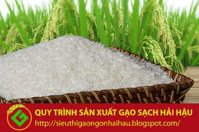 Quy trình sản xuất lúa gạo sạch đặc sản truyền thống Hải Hậu