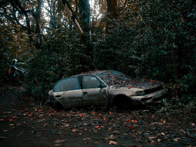 Hawaii's Dense Forests Envelop Abandoned Cars in Photographs by Thomas Strogalski