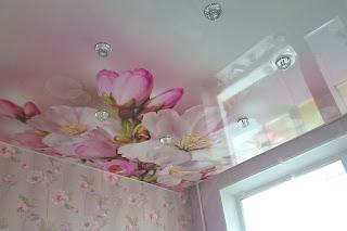 Заказать недорогие натяжные потолки с фотопечатью в городе Тихорецк