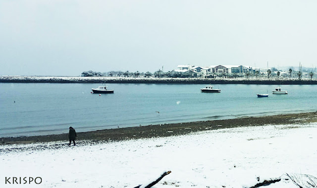 playa pequeña de hondarribia y hendaia con nieve