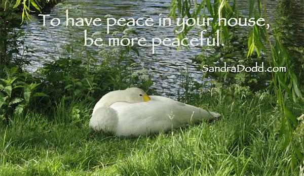 swan lying in grass near lake