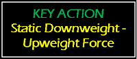 key action upweight & downweight force