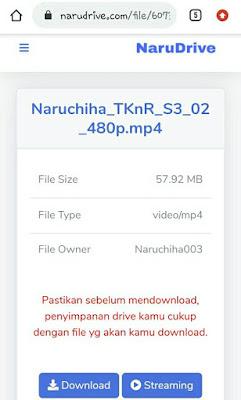 download Narudrive