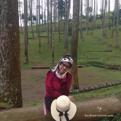 Wana Wisata Batu Kuda Gunung Manglayang