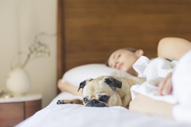¿Duermes mucho y amaneces cansado? Esta es la razón