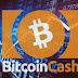 بيتكوين كاش - Bitcoin Cash (BCH)