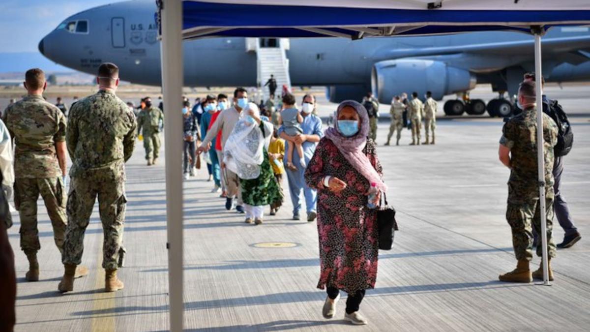 Aerei militari Sigonella rifugiati Afghanistan operazione Allies Refuge