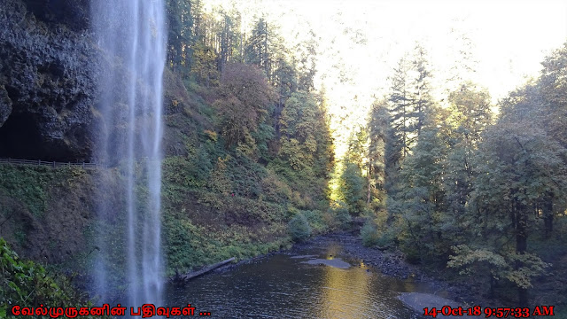 Silver Falls State Park South Falls