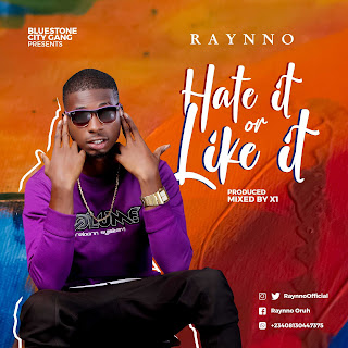 Raynno - Hate It or Like It (prod. by X1)