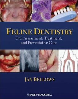 Feline Dentistry Oral Assessment, Treatment and Preventative Care