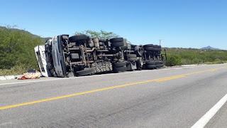 Enxame de abelhas invade cabine, motorista perde controle e vira caminhão na BR-304 no RN