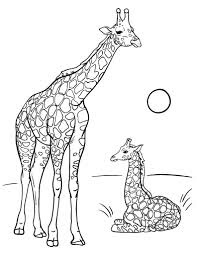 Cute Mom And Baby Giraffe Coloring Pages For Print