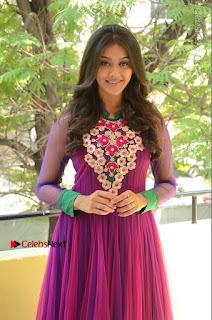 Actress Pooja Jhaveri Latest Stills in Purple Salwar Kameezt at Dwaraka Success Meet  0035.JPG