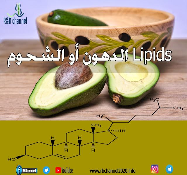 الدهون أو الشحوم Lipids