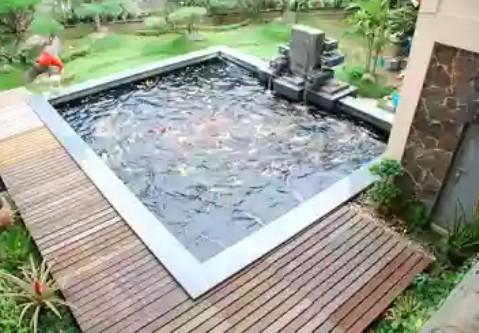 jasa pembuatan kolam koi minimalis di sidoarjo - salwa