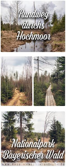 Rundtour durchs Hochmoor im Nationalpark Bayerischer Wald 04