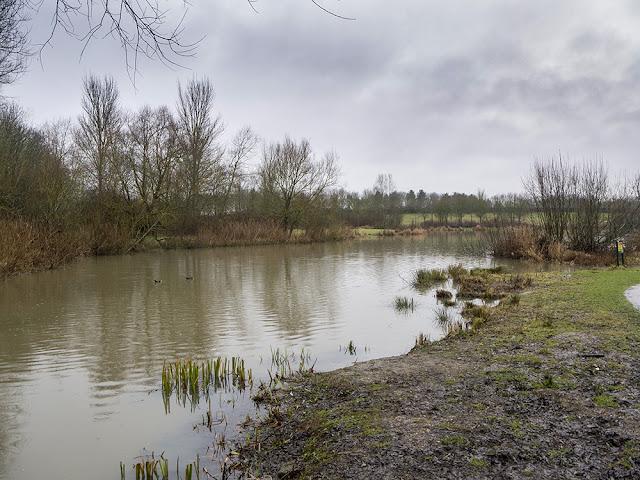 Nature area of Furzton Lake