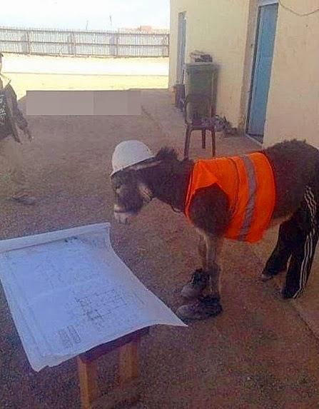Bauarbeiter auf Baustelle lustig - lachbilder
