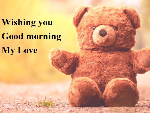 Top Teddy Bear Images Greetings Pictures For Whatsapp