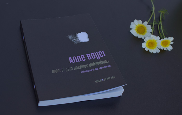 Traducción de Adalber Salas Hernández sobre los textos de Anne Boyer