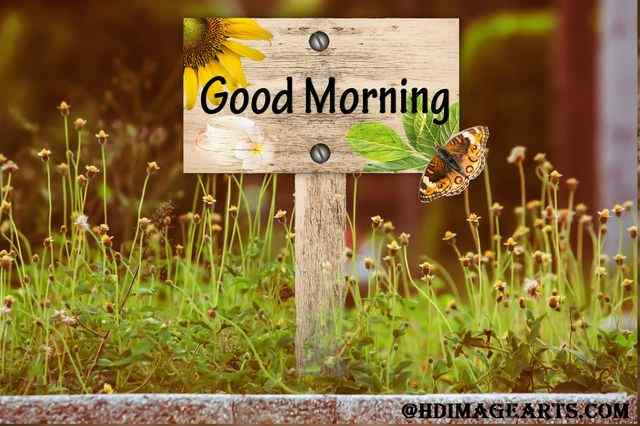 Good Morning Monday Images