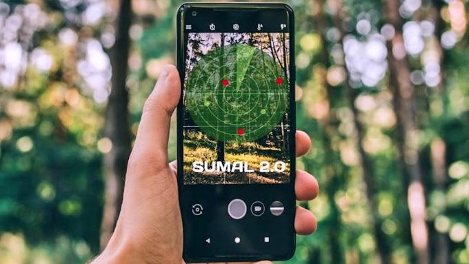 SUMAL, sistemul care identifică tăierile ilegale de arbori, va intra în funcțiune la sfârșitul lunii ianuarie