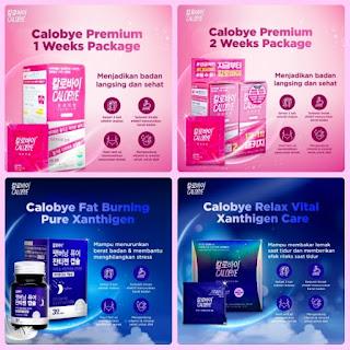 produk obat diet calobye premium diet success plan
