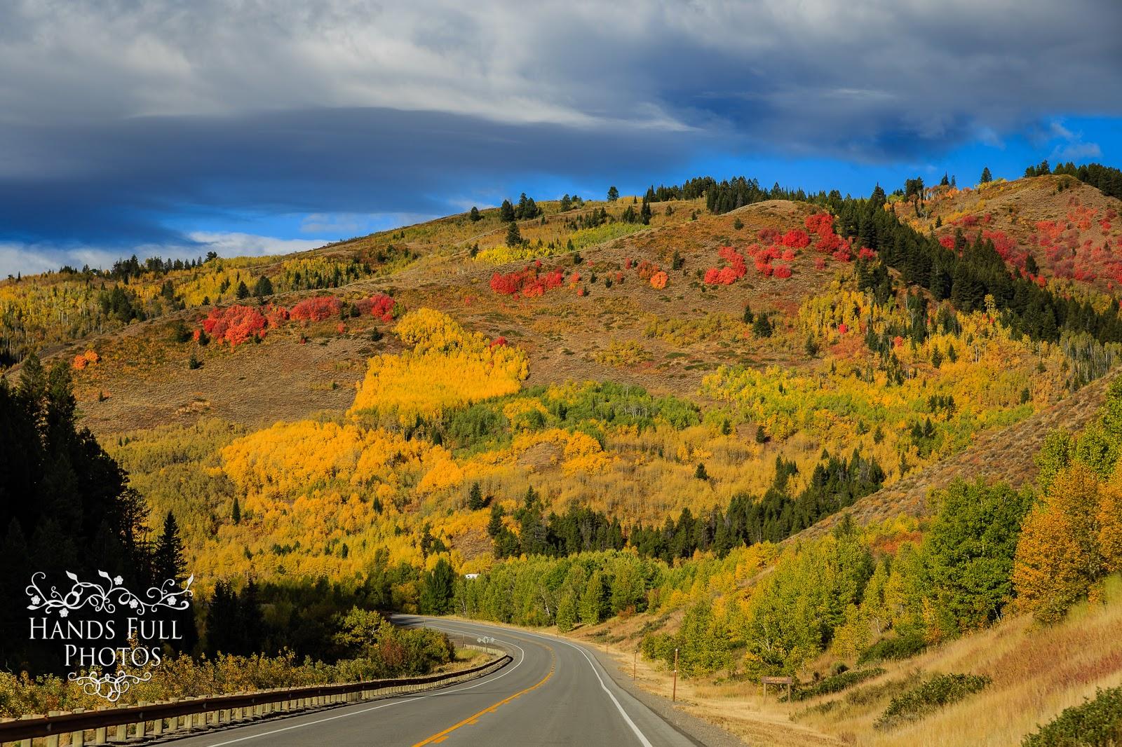 journey with autumn