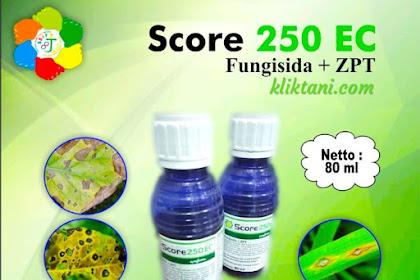 Fungisida Score 250 EC, Obat penambah bobot padi andalan petani