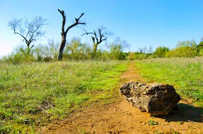 Reflexion La Piedra para inspirar a las personas que ven los problemas y prefieren evitarlos antes que afrontarlos.