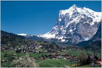 天然スイス漆喰 Calk Wall