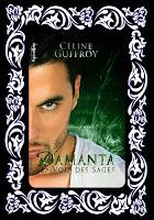 http://unpeudelecture.blogspot.fr/2015/12/damanta-tome-2-de-celine-guffroy.html