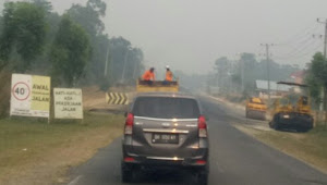 Kabut Asap Semakin Pekat, DLH Tebo: Kualitas Udara Tidak Sehat